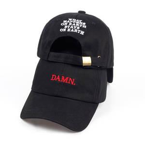 Unisex Spring summer DAMN Hats Embroidered Earth Dad Hat Hip Hop cap Kendrick lamar Rapper Snapback hats Baseball Cap wholesale(China)
