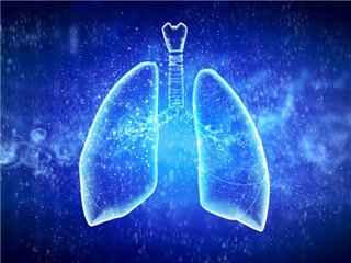 四种润肺汤在雾霾天气中保护好你的肺-养生法典