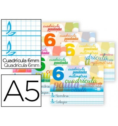 NOTEPAD LEADERPAPER PAUTAGUIA TOP BOXBOARD 32 SHEETS DIN A5 70 G SQUARE GRID SCHEDULED 6 MM LANDSCAPE 10 PCs