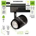 فوكو دي كاري LED ، بويدن ajustar el ángulo de luz ، لون الزنجي 36 واط 4000K لوز دي ديا