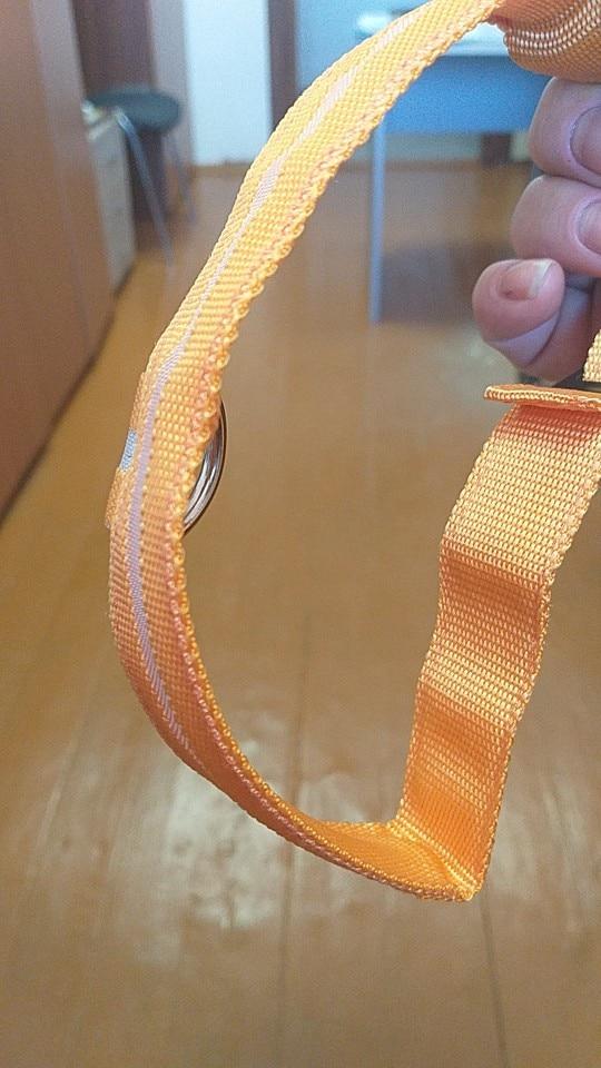 MEGA LED Safety Dog Collar photo review