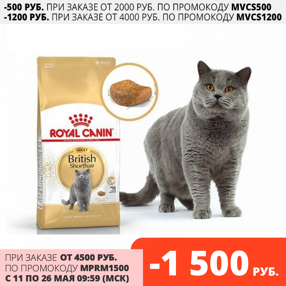 Royal Canin British Shorthair Adult корм для взрослых кошек британской короткошерстной породы, 10 кг