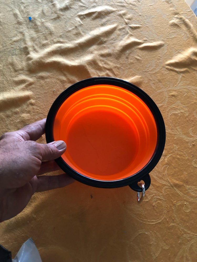 Folded Silicone Pet Dog Bowl 350ml and 1000ml photo review