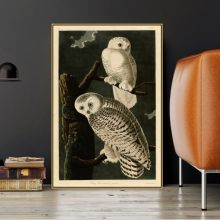 John J. Audubon Old Famous Master American Artist Snowy Owl Canvas Painting Poster Print for Living Room Wall Decor POP Wall Art(China)
