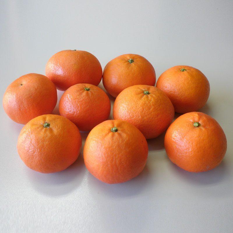 Mandarin Tarocco, 10 kilos zone Safor-Valldigna
