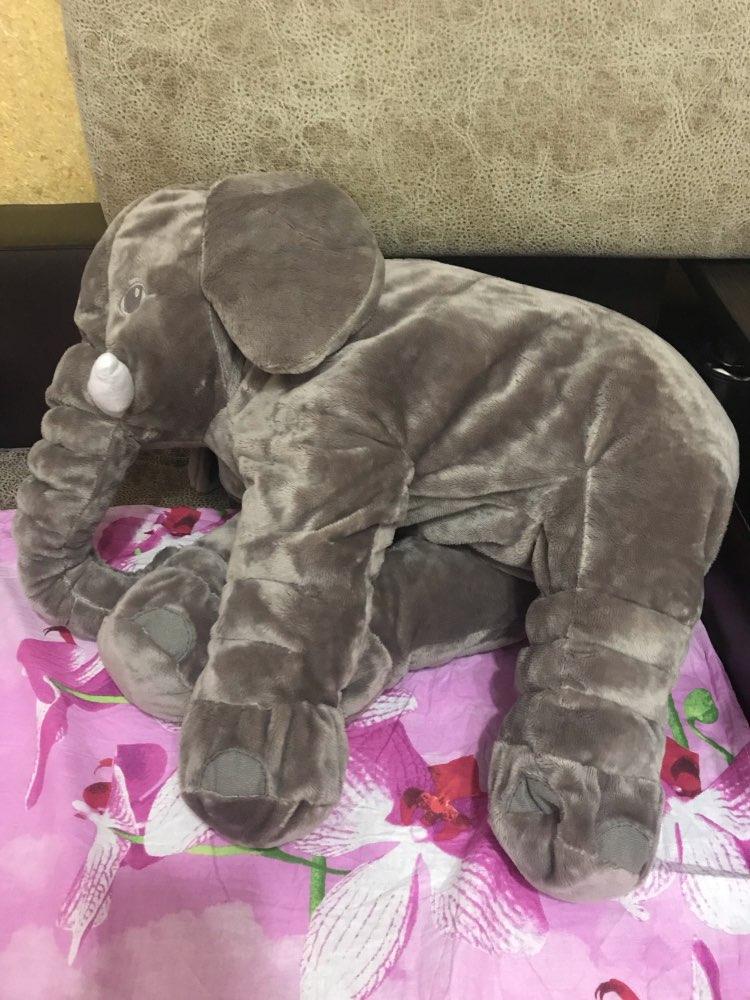 -- Acompanhar Acompanhar Elefante