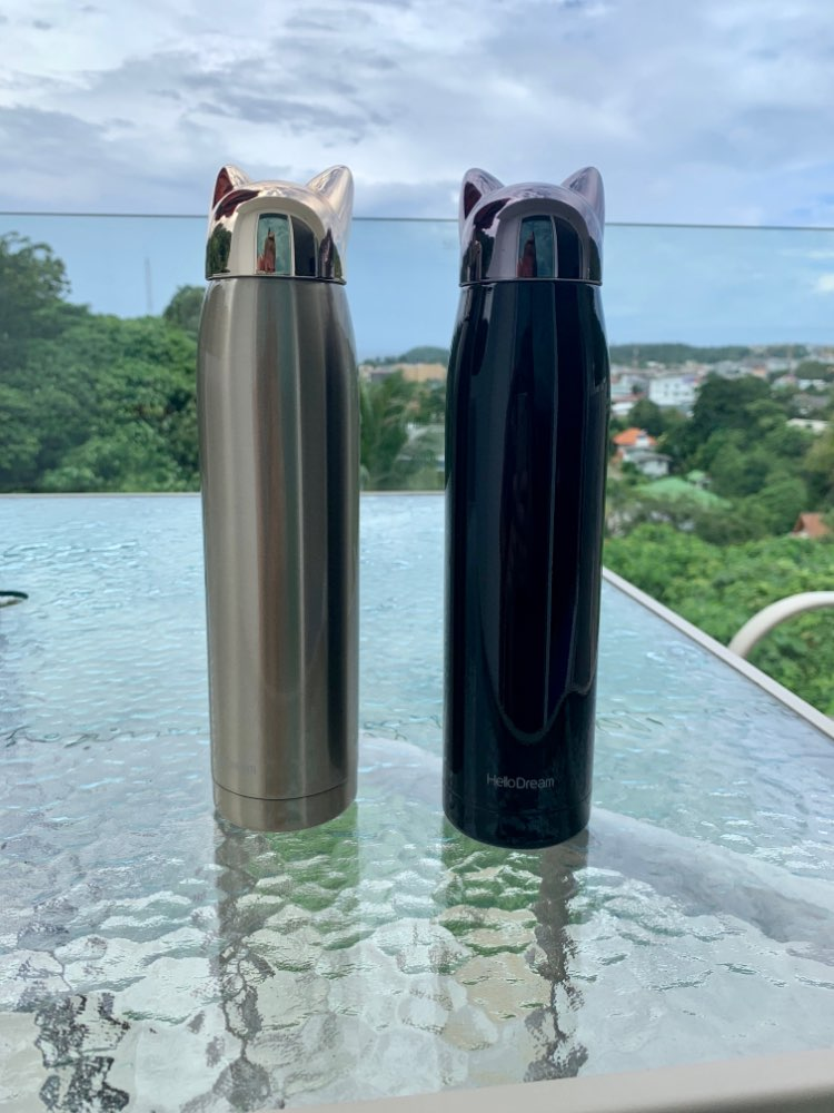 320ml/11oz Double Wall Thermos Water Bottle Stainless Steel Vacuum Flasks Cute Cat Fox Ear Thermal Coffee Tea Milk Travel Mug-in Water Bottles from Home & Garden on AliExpress