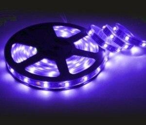 LED Strip 5 M 3528 12 V 24 W IP65 BLUE
