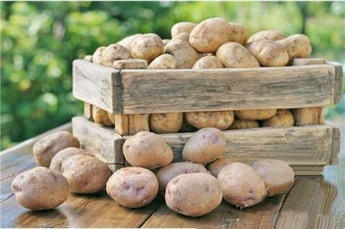 秋季可以常吃的食物土豆对于人体的好处详解-养生法典