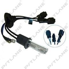 Лампа Ксенон H3 12V-6000К Maxlum/Sho-me автомобильная, лампочки на авто (PS11132)