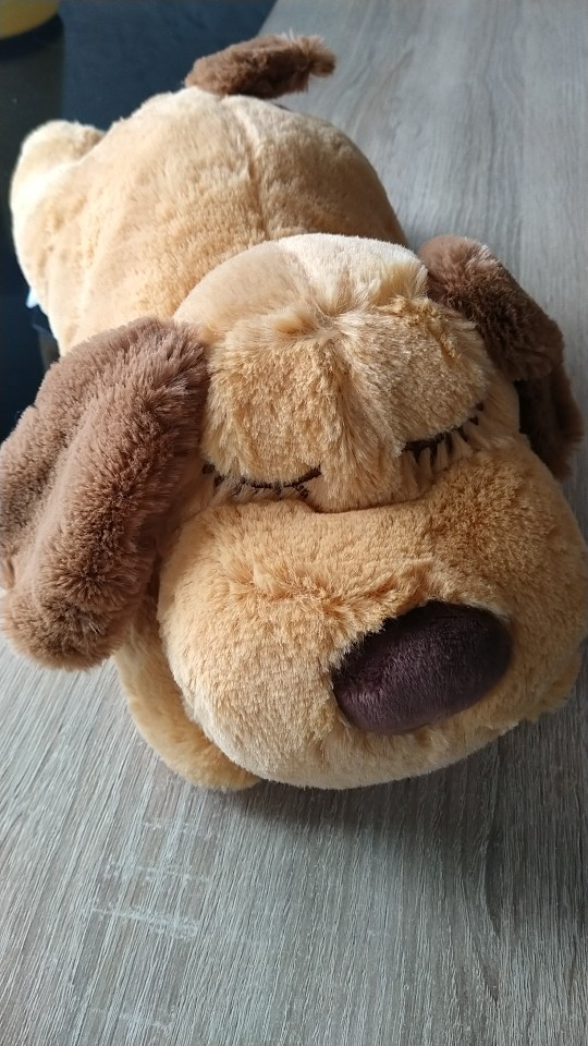 DogMEGA Heartbeat Puppy   Puppy Cuddles   Puppy Heartbeat Toy photo review