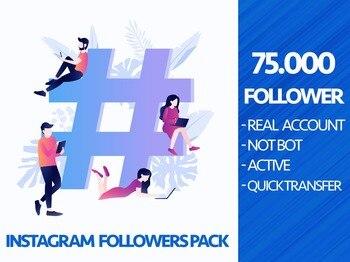 75000 Instagram Followers For Your Profile ig follow 75k Organic Instagram Growth