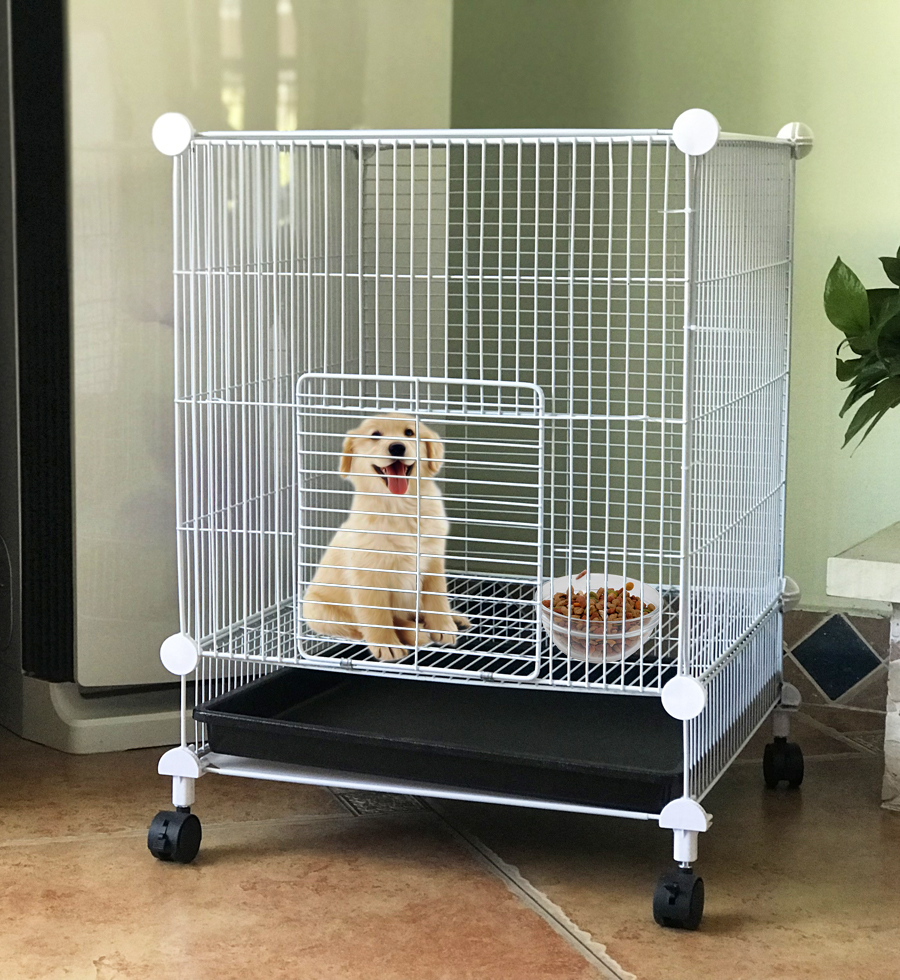 SOKOLTEC Aviary For Dogs