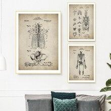 Carteles médicos de la anatomía humana de la vendimia e impresiones esqueleto de la pared de la patente arte lienzo pintura cuadros médicos decoración de la pared de la Oficina