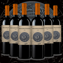 Red wine, Mesopotamia Roble 2018 (6bot x 0,75L) best red wine oak Aribayos Wines & craft beers. Wines From Toro. Wines from Spain