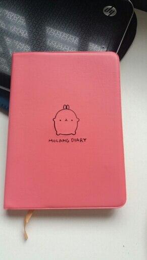 Cadernos diário diário artigos
