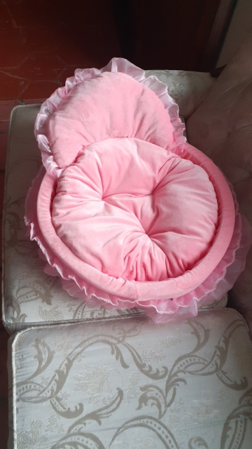 Cute Small Dog Beds | Cute Puppy Beds | Cute Girl Dog Beds | Cute Cat Bed photo review