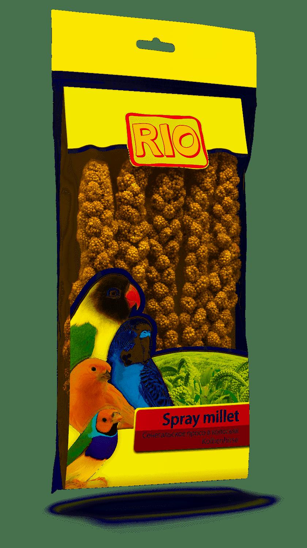 Rio сенегальское Millet In колосьях (100), Without Characteristics