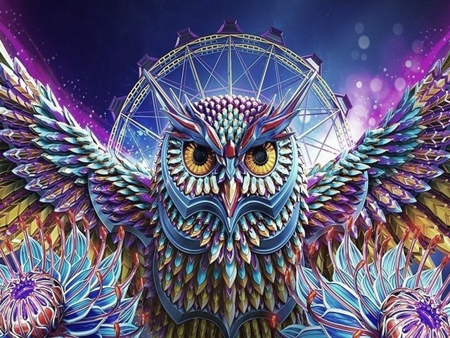 Painting By Numbers Owl Dream Catcher, 40x50 Cm