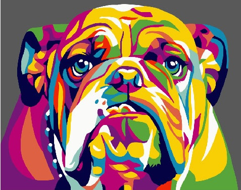 Painting By Numbers GX 26198 Rainbow Bulldog 40*50