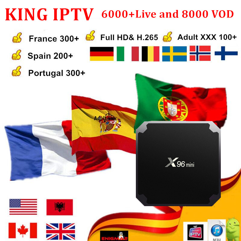 French IPTV Subscription For France UK German Arabic Dutch Sweden French Poland Portugal Smart TV Android Box IPTV M3U X96 Mini