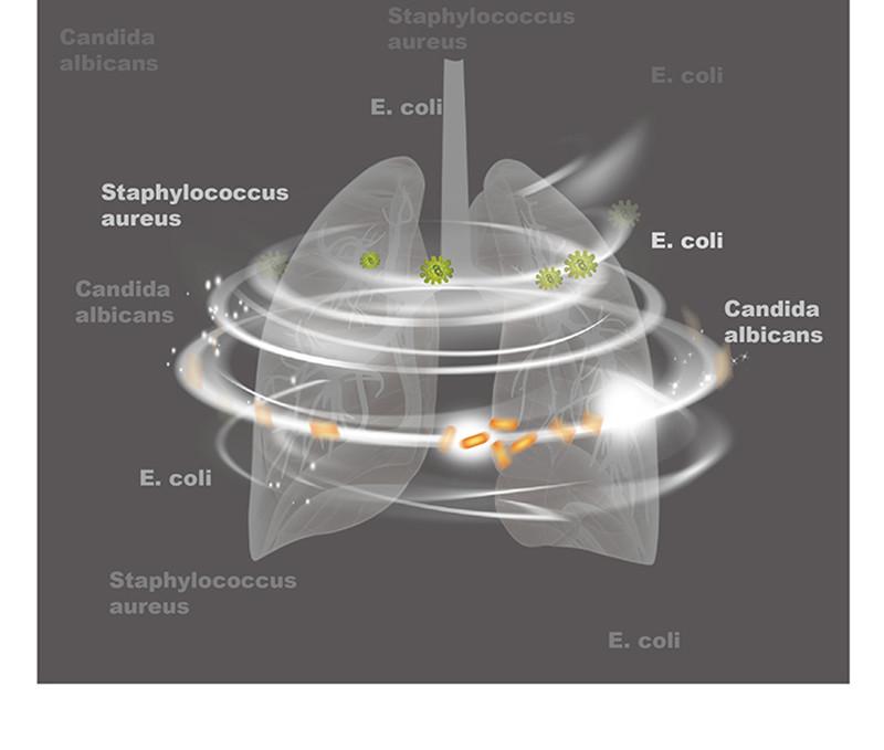 negative-ion Rechargeable Battery Ventilator Sterilizer CPAP APAP BPAP Disinfector for Face Mask Sleep Apnea OSAHS OSAS (11)_