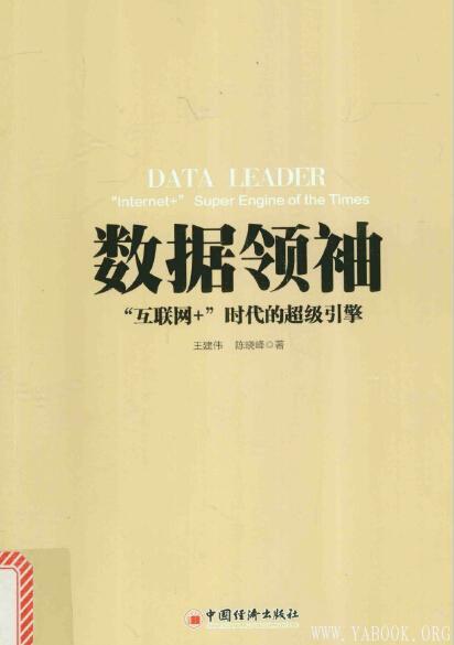 《数据领袖》封面图片