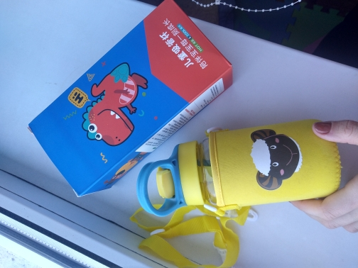 Kids Animals Glass Water Bottle with Straw Bag Strap Carrier Locking Top Lid Leak Proof BPA Free Gilrs Boys Travel Hiking 500ml Water Bottles    - AliExpress