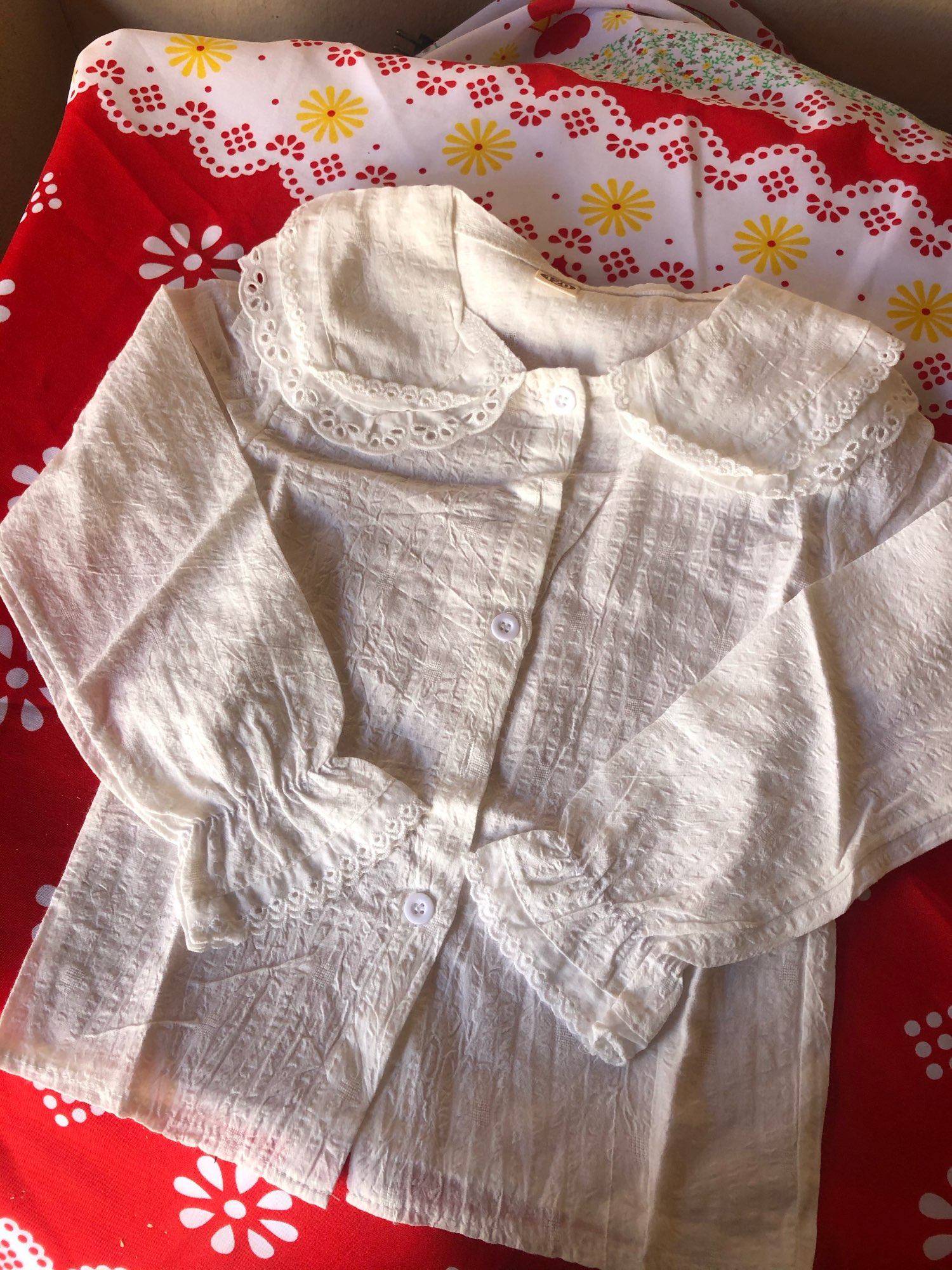 Girls Style Lapel Blouse With Flared Sleeves Shirt Long-Sleeved Spring Autumn Fruit Print Lapel Lace Top Cotton White Shirts photo review