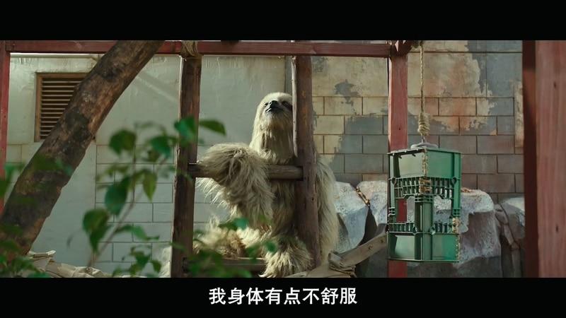 2020韩国喜剧《秘密动物园》HD720P&HD1080P.韩语中字截图;jsessionid=RsnX83Eu9I9Q7a47wPqhzMfiJVJ5ciMaVjpXGGd3
