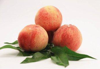 一个水蜜桃的热量有多少 吃水蜜桃会不会变胖-养生法典
