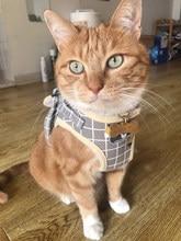 Moda xadrez gato arreios para gatos verão malha pet arnês e trela conjunto katten kitty maskas produtos para gotas acessórios