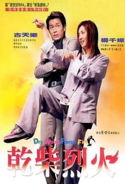 干柴烈火2002