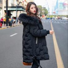 Mùa Đông Phong Cách Nóng Bỏng Trắng Thêu Vịt Xuống Thêu Xuống Áo Khoác Nữ Thời Trang Mới 2019 Nữ Áo Dài