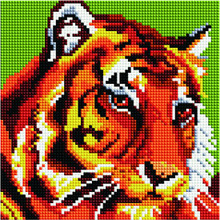 Алмазная мозаика BF 645 Тигр 20*20