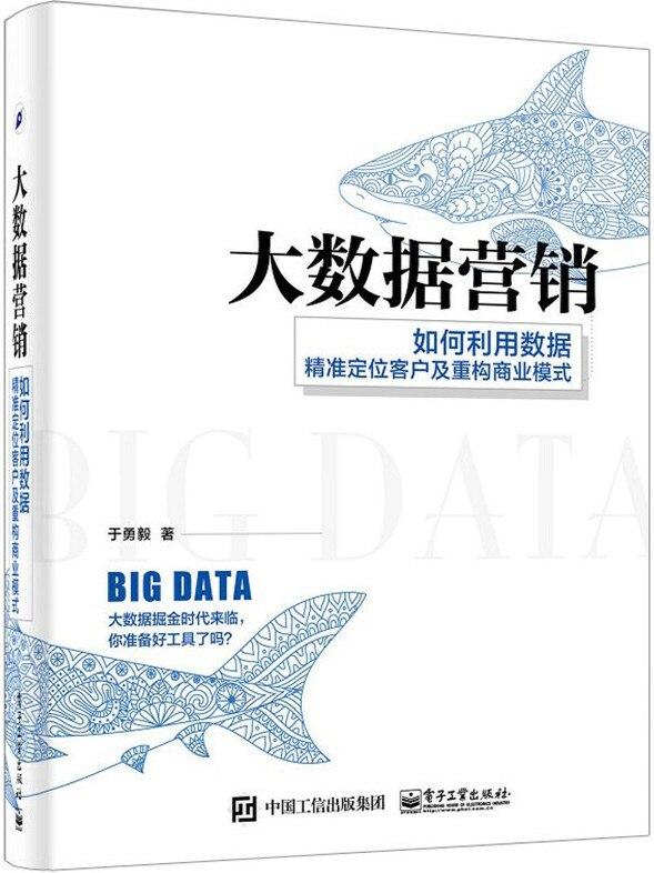 《大数据营销:如何利用数据精准定位客户及重构商业模式》于勇毅【文字版_PDF电子书_下载】