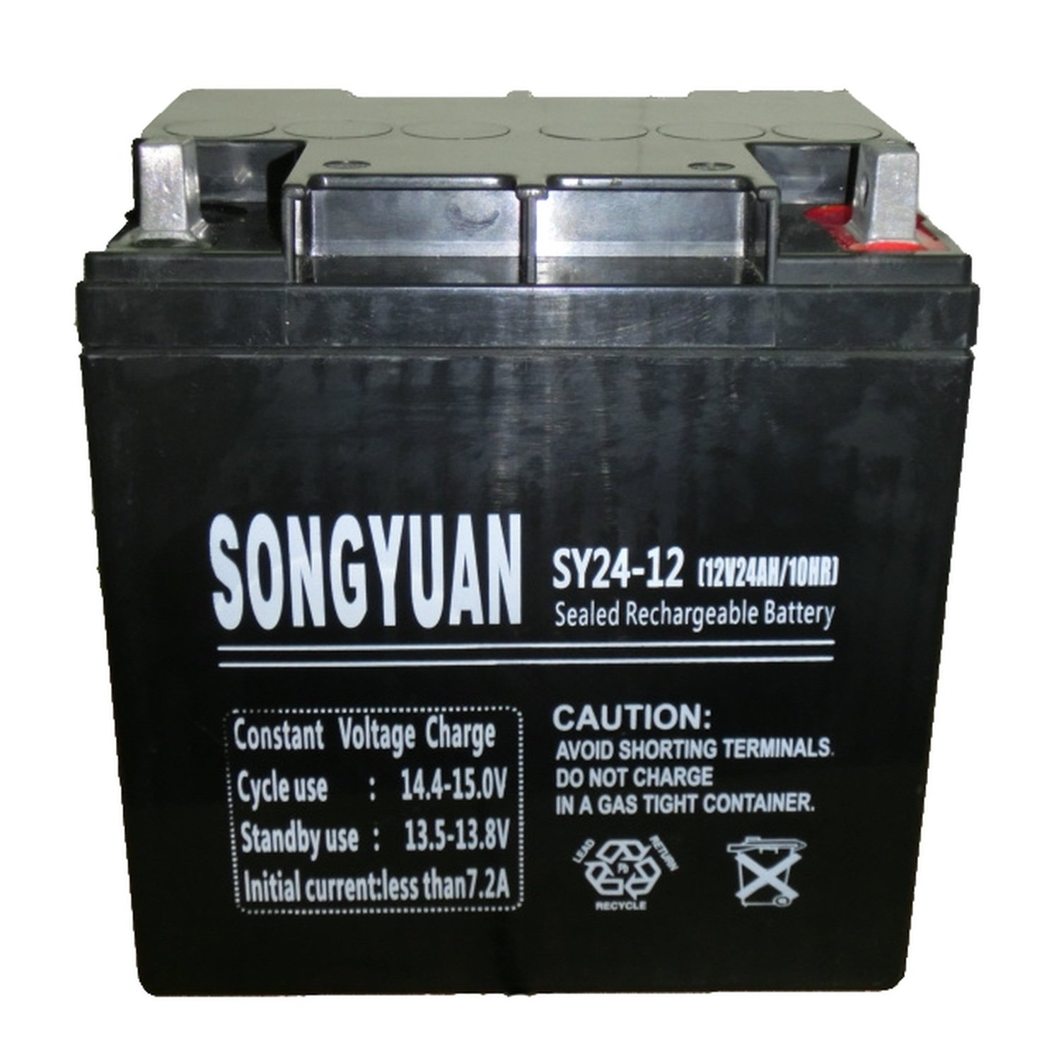 Lead Battery 12 V/24Ah SY24-12 165mm x 125mm x 175mm наклейка blue horse 30 x 10 a4 144