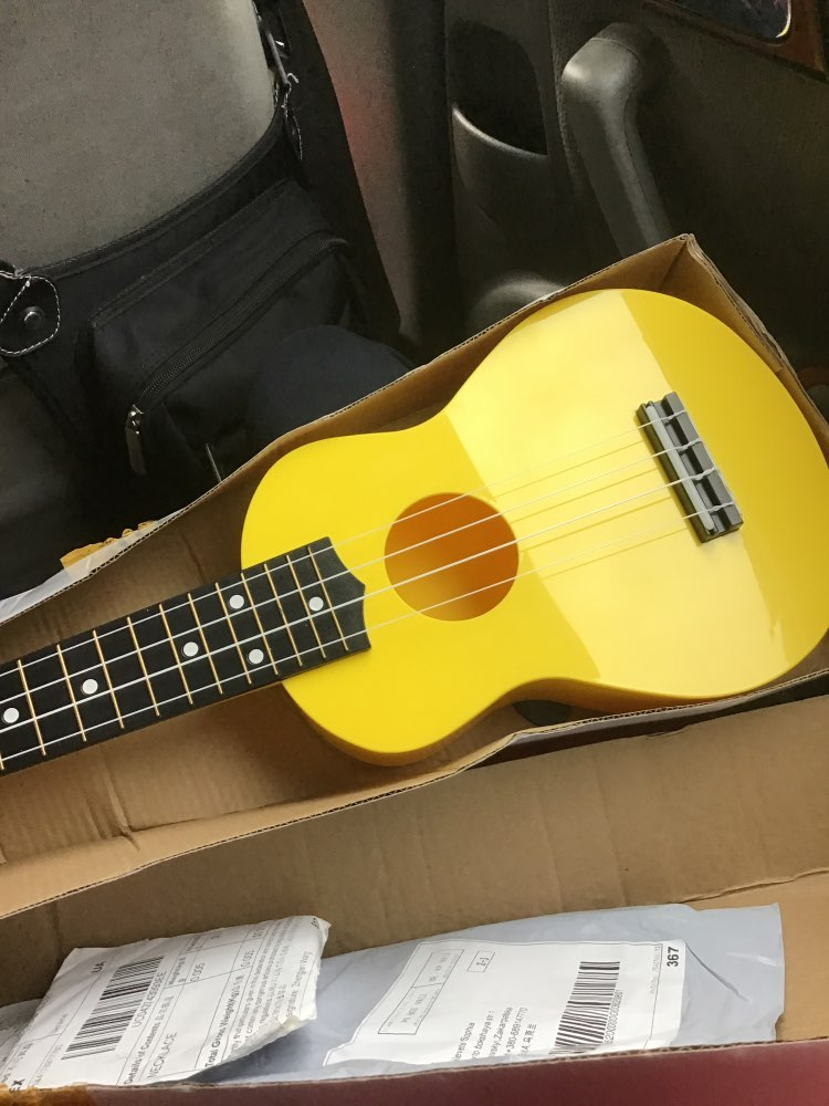 Ukulele Guitarra Instrumento Crianças