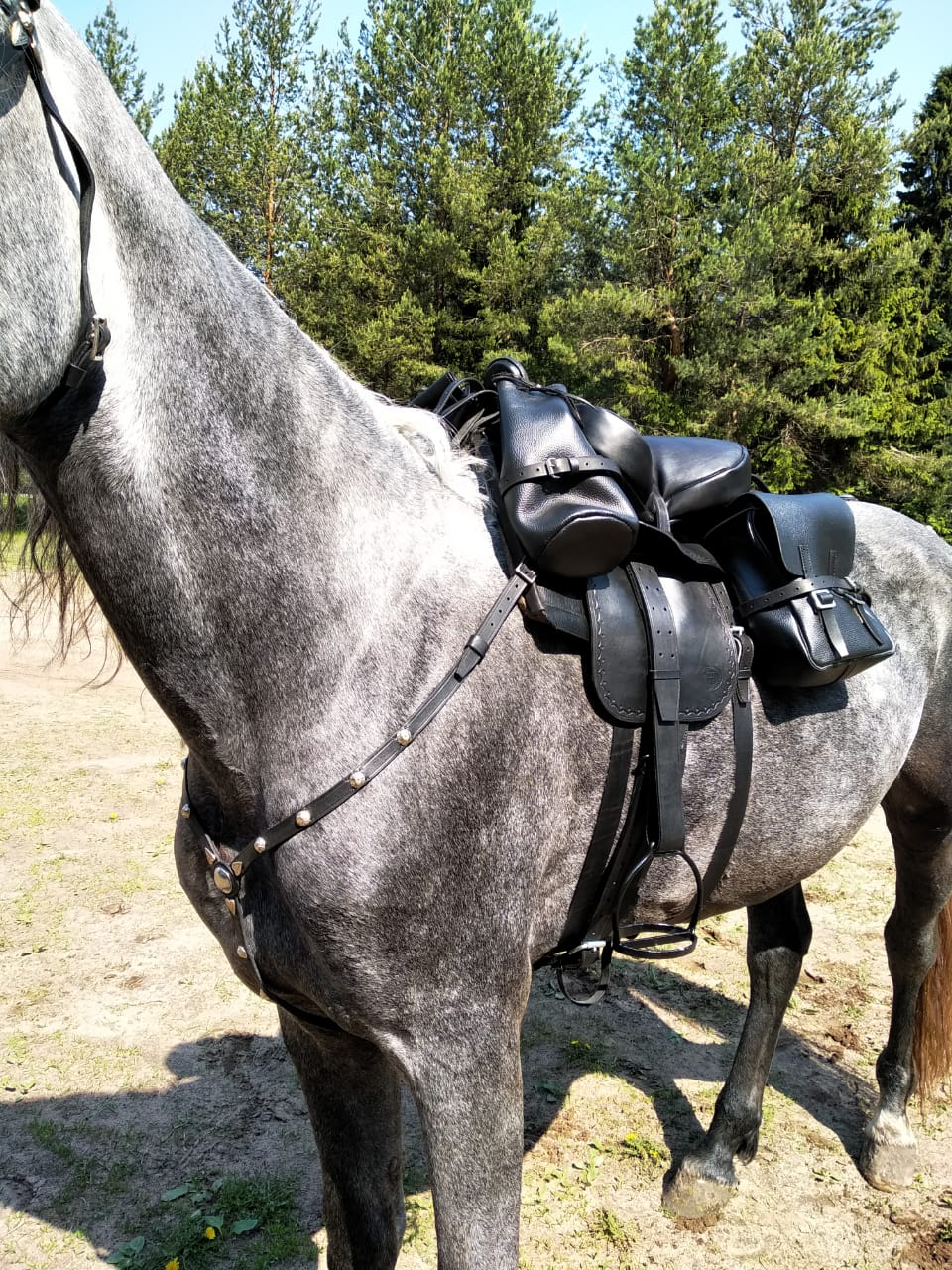 Казачье офицерское Saddle With Harness And Bridle