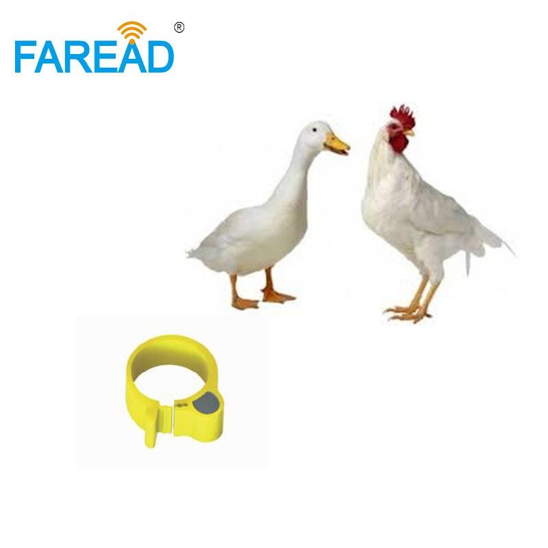 X100pcs RFID TK4100 Chip125Khz RFID Foot  Tag Ring For Chicken Duck ID Tagging