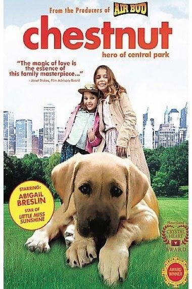 切斯纳特:中央公园的英雄