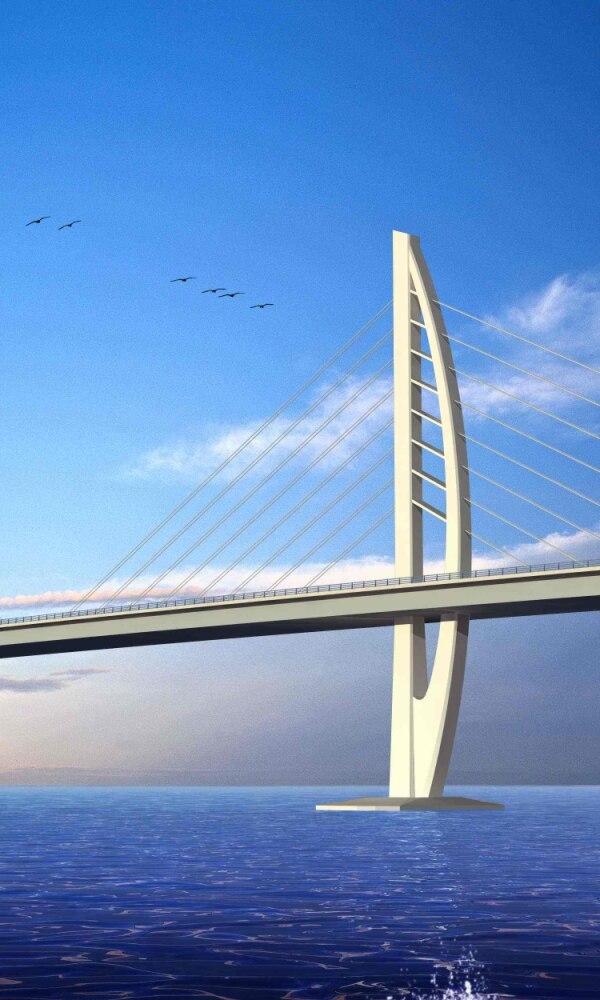 《港珠澳大桥》封面图片