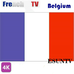 6/12 Month French IPTV ESUNIPTV Arabic Dutch TV Spain IPTV Android tv box m3u premium server abonnement XXX