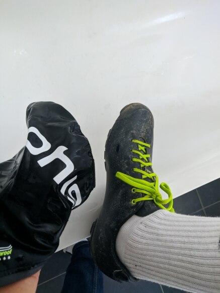 -- Sapato Sapato Sapatos