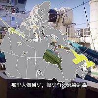 加拿大北极虾春饼卷的做法图解1