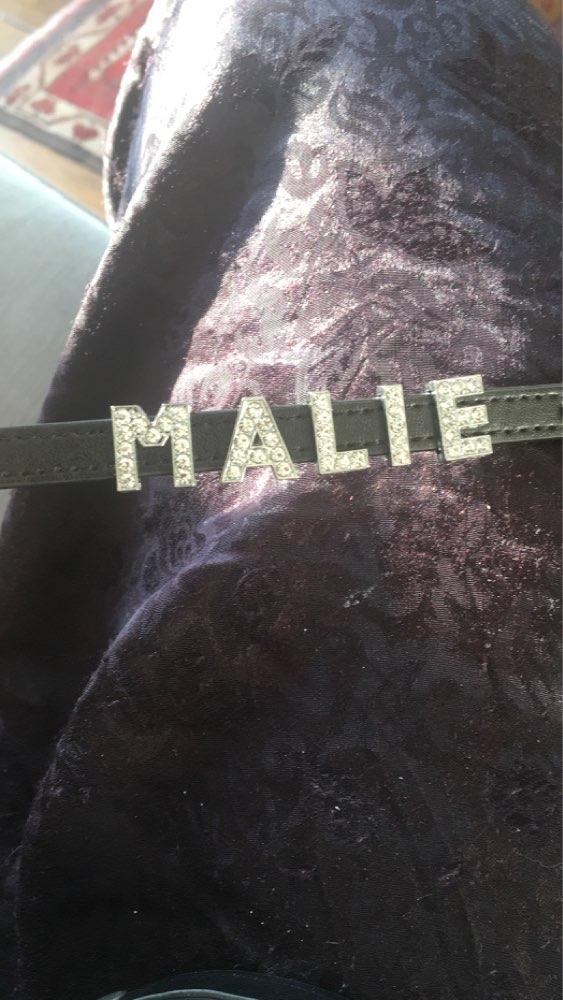 Collier en cuir pour animaux de compagnie, personnaliser le noms de votre chiens