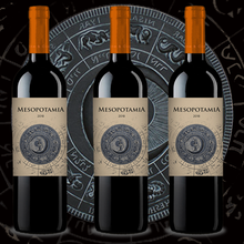 Mesopotamia Roble 2018 (3bot x 0,75 L) Best Red Wine Roble from Aribayos. Red Wine from Spain. Oak Tempranillo Vinos de España..