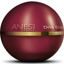 Anesthéi INFINI JEUNESSE adn chronologie crème anti-âge adn chronologie 50 ml