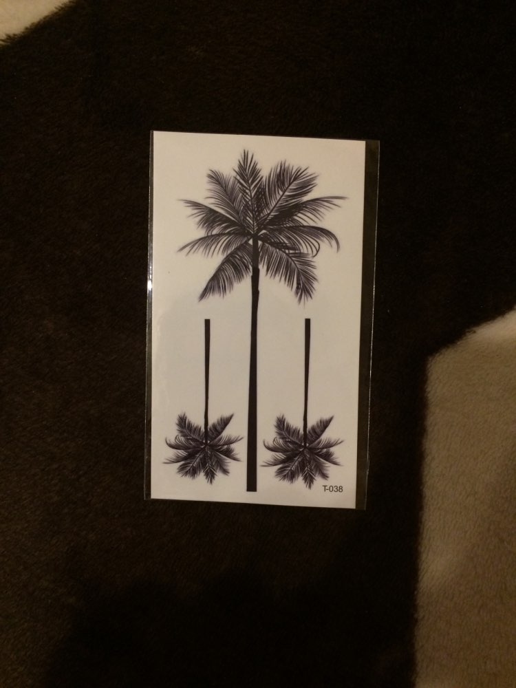 Small Palm Tree Tatoo photo review