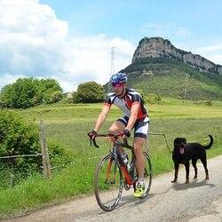 IBÁÑEZ Dogcycle